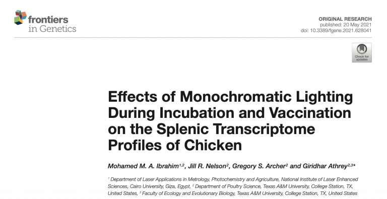 New chicken genomics paper